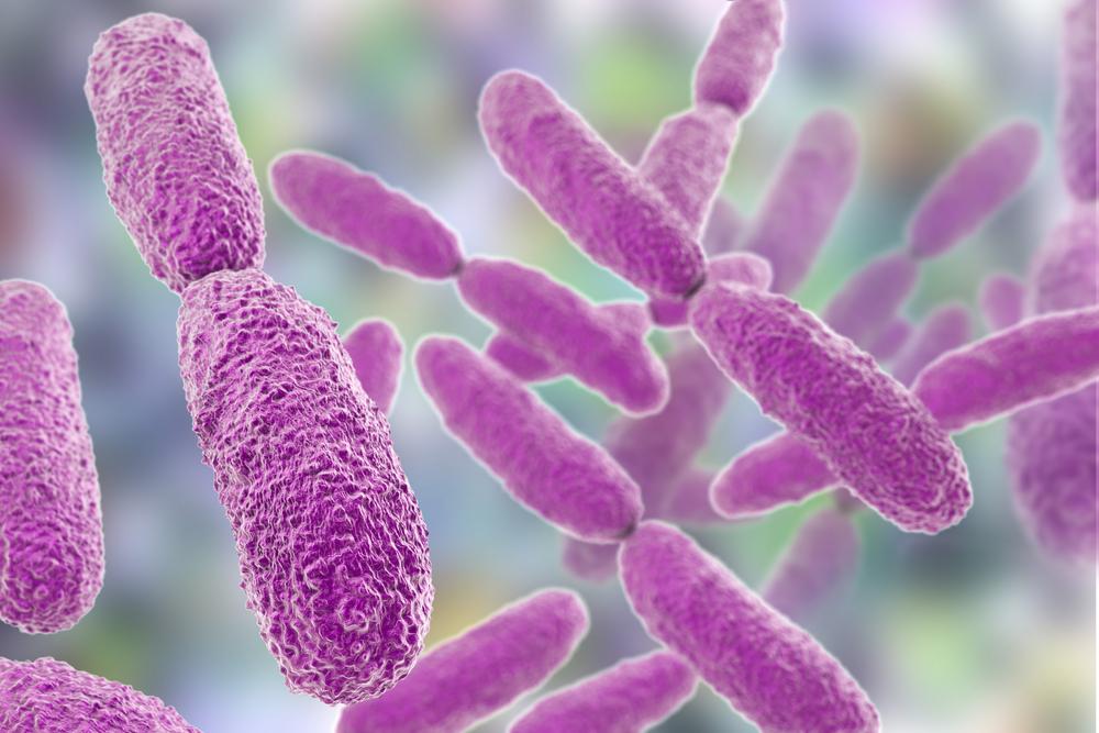 Coliform Bacteria – Murray Brown Labs